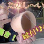 あらっ楽しい 益子焼窯元共販センターで絵付け体験!